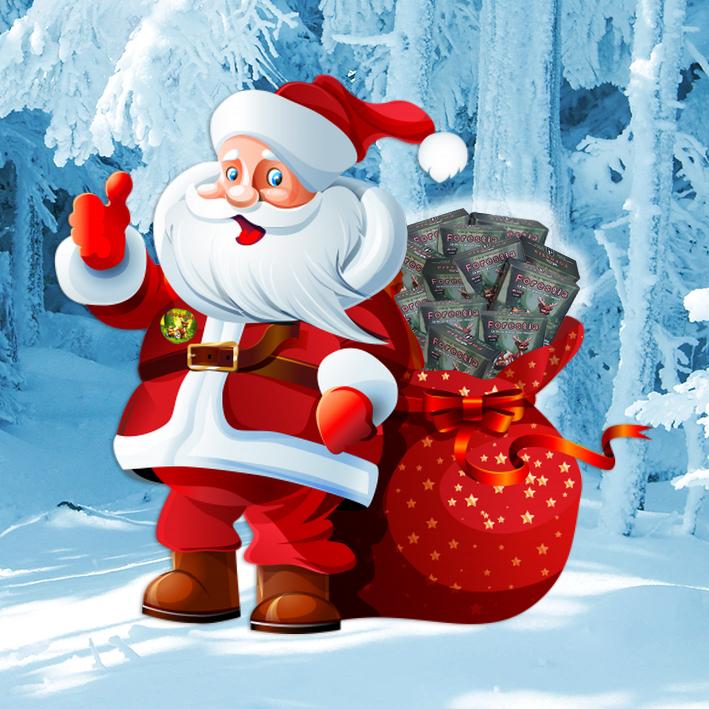 Forestia sous le sapin de Noël